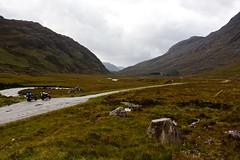 (urbannivag) Tags: northcoast500 scotland adv triumph speedtriple motoguzzi v7 motorbikes adventure touring