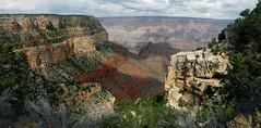 Grand Canyon National Park  AZ. (Bernard Spragg) Tags: thegrandcanyonaz landscape scenery usa lumixfz1000 arizona vast o geotagged flickrlover freephotos