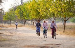 People biking on rural road in Bagan, Myanmar (phuong.sg@gmail.com) Tags: active activity bagan bicycle bicycling bike burma burmese cheerful cycle emotions family front fun gate happiness happy home leaving lifestyle little morning myanmar outdoors pagan people person portrait positive road safe safety sister smile summer together traveling