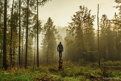 Man in the forest (z.dorighi) Tags: man lonely loneliness forest trees wood mood moody fog mist misty sadness sad landscape nature human
