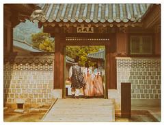 41/52 Seoul Hanbok [explored] (eric_marchand_35) Tags: hanbok korea seoul core gyeongbokgungpalace week412016 52weeksthe2016edition weekstartingfridayoctober72016 kodakchromestyle