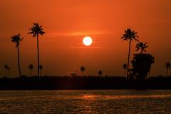 India (Enricodot ) Tags: enricodot india kerola sunset evening tramonto travel water red orange sun dusk