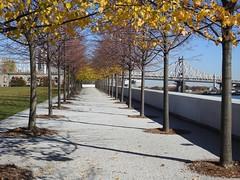161119 FDR Four Freedoms Park (BY Chu) Tags: newyork rooseveltisland fdrfourfreedomspark eastriver