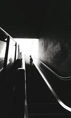 Stairway to... (elgunto) Tags: subway metro exit street photo people stairway mechanicstairs blackwhite bw barcelona sonya7 nikon2035 ai manuallense