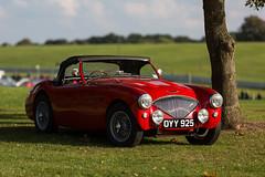 Austin Healey (Chris O'Brien Photography) Tags: austinhealey ef70200mmf28isiiusm cars oultonpark canon eos5dmarkiii uk 5dmk3 5d3 classic shiny car sportscar roadster sport