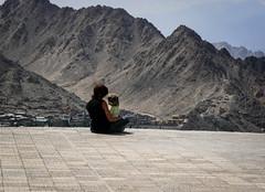 contemplation (vio trieves) Tags: ladakh leh himalaya