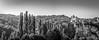 Saint-Cirq-Lapopie, dans la vallée du Lot... (BO31555) Tags: anniversaire ancien blancoynegro famille médiéval bw église 2016 architecte paysage bernardo architecture midipyrénées nikon blanc ondry bernard belle sibomana eglise landscape cathedral black 20mm noir et blackwhite nikor clocher art landschaft weekend bellemaison ancienne lot moyenâge blackandwhite dark blanco y negro bernardondry noire artiste noiretblanc fidèle campagne d810