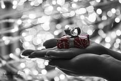 DECÁLOGO NAVIDEÑO EN COMERCIO (Daniel JG) Tags: bn blancoynegro blackandwhite regalo gift present bokeh pdc doc hand christmas navidad santaclaus papanoel christmaseve fir tree abeto danifotografia danieljimenezfotowixcomportfolio danieljg