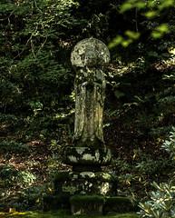1610_1362 (mrittenhouse) Tags: kyoto ohara sanzenin buddha deity japan moss nature reverence