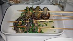 Cyprus Snails