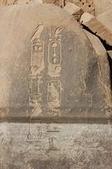 Hieroglyphs on Elephantine rocks (gilmorem76) Tags: egypt egyptology hieroglyphs pharaoh history ancient travel nile tourism