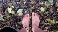 swamp feet (bfe2012) Tags: barefoot barefeet barefooting barefooted barefooter barefoothiking baresoles barefoothiker barfuss feet freedom forest lifestyle barefootlifestyle muddyfeet toes toughsoles soles dirtyfeet dirtysoles hiking swamp shoes stain myshoes woodland nature blacksoles