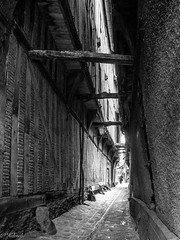 rue des chats N&B (Hlne Baudart) Tags: noir et blanc troyes rue des chats
