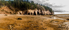 The Rocks Are Alive (James P. Mann) Tags: the rocks rock formations hopewell cape new brunswick fundy bay coast line beach