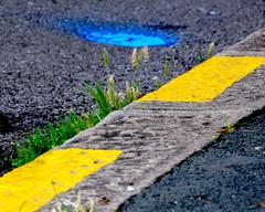 (Jean-Luc Lopoldi) Tags: kerb sidewalk bordure trottoir peinture paint couleurs herbe caniveau bitume lignejaune yellowline grass