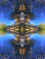 Reflections (rhonda_lansky) Tags: blue reflection water tree leaves plants creations formations nature design abstracttree visual plant abstractoutdoors outdoor mirroredshapes mirroredabstract mirrorart symmetryart symmetrical symmetricalart symmetryartist symmetricalartist abstractart earth expressive abstractplant rhondalansky surreal pattern organicpattern texture art poems shortstories storys writing abstract lansky foliage rhonda organic