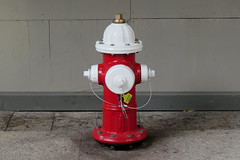 A shiny new fire hydrant on the Sparks Street Mall in Ottawa, Ontario (Ullysses) Tags: firehydrant fireplug sparksstreetmall ottawa ontario canada autumn automne hydrant bornedincendie bornefontaine