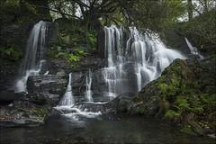 Cascada (Explore) (Jose Cantorna) Tags: cascada waterfall water paisaje nikon d610 seda otoño agua