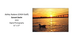 "Sunset Swim • <a style=""font-size:0.8em;"" href=""https://www.flickr.com/photos/124378531@N04/31296152272/"" target=""_blank"">View on Flickr</a>"