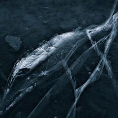 Ice (Tom Jenssen) Tags: iceforms november cracks is tomasvatnet ice