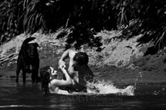Afternoon Swim in the River19 (C & R Driver-Burgess) Tags: boy uncle splash brothers black dog beach sand river swim play bank monochrome bw