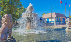 Water Fountain in Havasu City by the Lake (Mrinmoy Saha) Tags: water fountain havasu city lake nikon d52000 dslr panaromic tall wide nature landscape manual earth top bright dim shadow light around view look travel happy life lively adventure globe world lonely peace peaceful calm quiet moment sharp clear soft beautiful capture red blue green color colors vivid vibrant legend day sun sunny sky tree leaves branches architecture urban urbanite cityscape desert downtown landmark town river wet lion sculpture