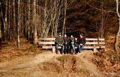 DSCN0848 (derudo) Tags: südschwarzwald stohren münstertal vogesenblick blickindierheinebene