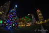 A fisheye perspective of christmas in Tampa. December 2016 (tarell_sallie) Tags: tampa florida tampabay hillsborough hillsboroughcounty centralflorida centralfl city cityscape landscape skyscrapers skyscraper skyline urban town downtown usa unitedstates america unitedstatesofamerica december 2016 winter fall spring summer canon canont3i photography nightimage nightshot nightphotography nightexposure longexposure thesouth southern south copyright lightroom macbook macbookair christmas christmastree holiday holidays christmasspirit happyholidays star christmasdecorations decorations floridaphotography floridaphotographer southernphotography southernphotographer trees palmtrees tree citylights curtishixonpark views fisheye fisheyelens