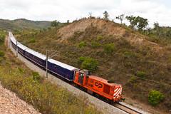 Presidencial nos Mouratos (Nohab0100) Tags: train railway locomotive cp alentejo ee comboio 1400 locomotiva englishelectric pereiras comboiopresidencial mouratos