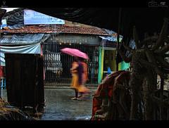 Kumartuli_2014_1 (indranilellipsisbanerjee) Tags: street people color rain monsoon kolkata streetersunplugged
