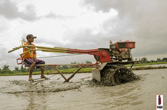 Halang/Linang 05 (Soil Cultivation) (ilusyonimages) Tags: street tractor asian photography asia farm philippines farming images illusion filipino farmer ricefields handtractor ilusyon