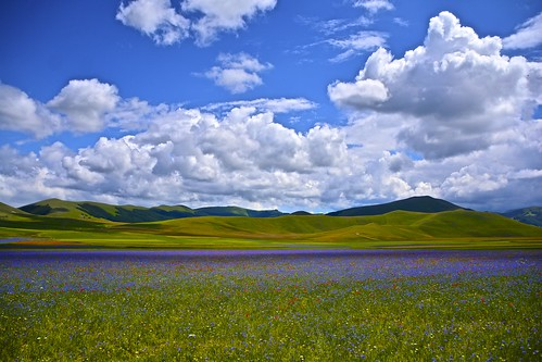 Castelluccio di Norcia again.. by Antonio Cinotti , on Flickr