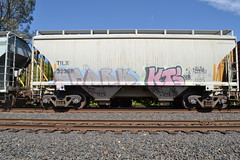 Shark KTS (huntingtherare) Tags: graffiti shark kts freighttrain rollingstock shorthopper