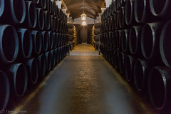 Home of the Sherry (Thomas Frejek) Tags: spain barrel bodega sherry andalusien spanien 2014 tiopepe fass jerezdelafrontera