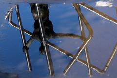 Guardando in una pozza (emilype) Tags: urban milan reflection art statue bronze italia arte milano urbanjungle acqua riflessi tristezza gioia pozza portagaribaldi pozzanghera cronacheurbane accadeamilano