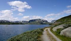 2014 018 Norway006 (ngari.norway) Tags: travel mountains norway lumix scenery scenic panasonic norwegian fjords hardangervidda haukeli gm1 haukelisaeter ngariphotographyphotos