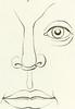 Image from page 172 of Lart de connaître les hommes par la physionomie (1835)