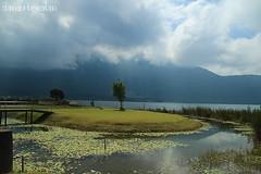 Lake Beratan (z_andana) Tags: bali lake indonesia landscape beratan bedugul