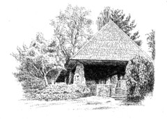 Summer House in Edward's Garden, Toronto (light and shadow by pen) Tags: pen ink garden landscape drawing arts edwards