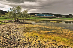 Across the Pond (Jim the Joker) Tags: train railway stokesay atw arrivatrainswales class175 coradia themarchesline