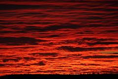 Sunrise 8 21 2014 #23 (Az Skies Photography) Tags: morning red arizona sky orange cloud sun black rio yellow skyline clouds sunrise canon skyscape eos rebel gold dawn golden 21 salmon august az rico rise daybreak 2014 arizonasky riorico rioricoaz arizonasunrise t2i 82114 arizonaskyline canoneosrebelt2i eosrebelt2i arizonaskyscape 8212014 august212014