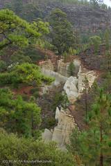 Teneryfa (x-oph) Tags: spain tenerife canary canaryislands kanary teneryfa hiszpania wyspykanaryjskie