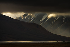 RelaxedPace00825_Svalbard7D4458 (relaxedpace.com) Tags: svalbard 7d longyearbyen 2014 mikehedge rpbest