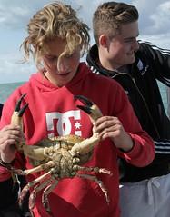 crabbing (auketts) Tags: sea fish fishing crab solent portsmouth channel oberon iow alfieaukett raymclaren