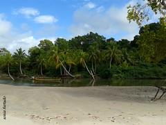 Praia do Goiabal (sonia furtado) Tags: brazil brasil poser sextaposer par norte soure euposso ilhademaraj fazendasojernimo frias2014 praiadogoiabal