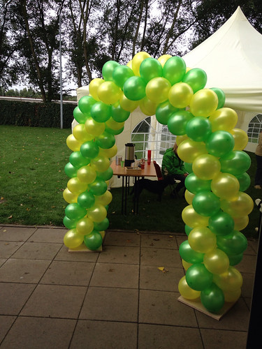 Ballonboog 5m Geel Grasgroen