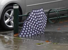 wet (brandsvig) Tags: summer wet water rain umbrella puddle skåne sweden august sverige malmö vatten regn sommar 2014 paraply lx7 augustenborg vått blött lumixlx7 augustenborgstorget skyyfall