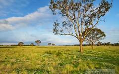 Lot 300 Old Gostwyck Park, Armidale NSW