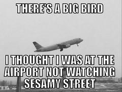 #airports #bigbird #aviation #jumbojets  #sesamestreet (muchlove2016) Tags: airports bigbird aviation jumbojets sesamestreet