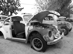 The Old Volks Home (29M) - 24 October 2016 (John Oram) Tags: vw volkswagen vwbeetle frenchs yuccavalley theautoclinic mono bw 2002p1140326cm